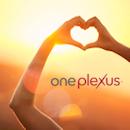 plexus heart